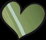 LoveNess   Absolute 15ml_
